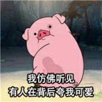 Vol.84 METROER本周关键词|猪猪——来年也要成为精致的猪猪女孩哦!本周关键词,猪猪,猪年,新年,吉祥物,过年,小猪佩奇,猪年限量
