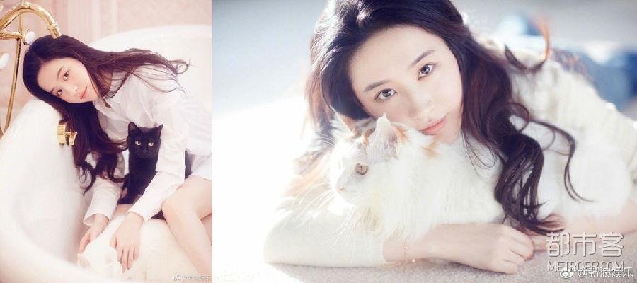 """刘亦菲:这个""""花木兰""""是个""""猫咪控""""!"""